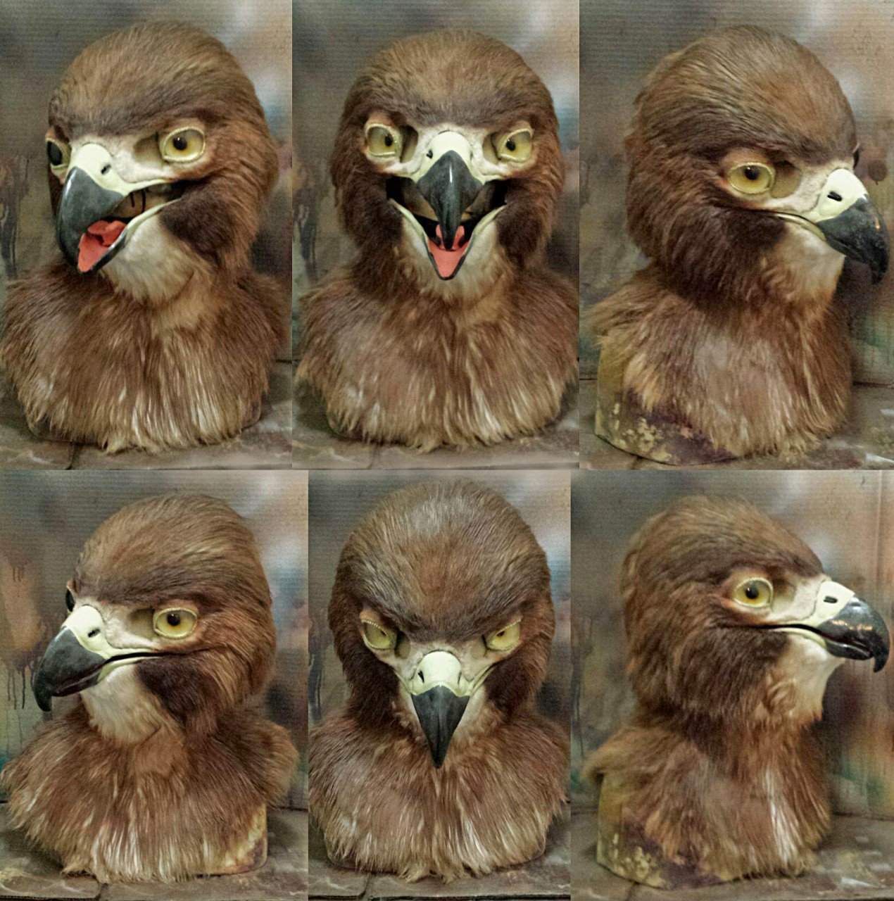 1548875753.crystumes_final_mask_red_tail_hawk.jpg