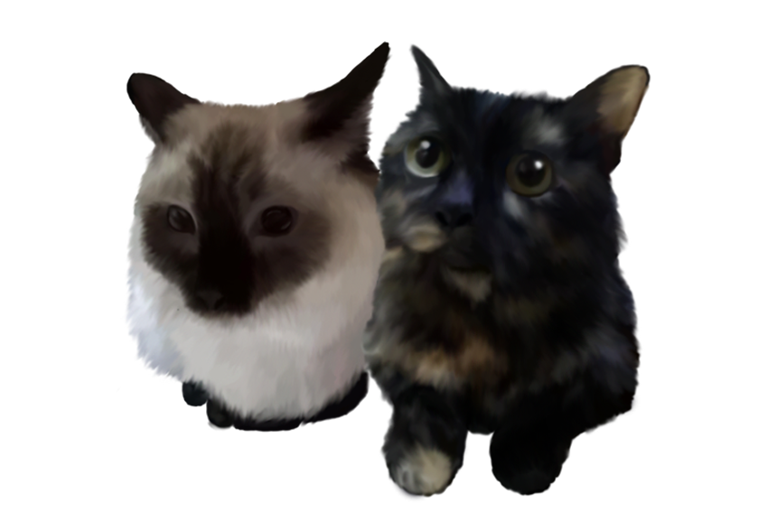 Catto Commission.png