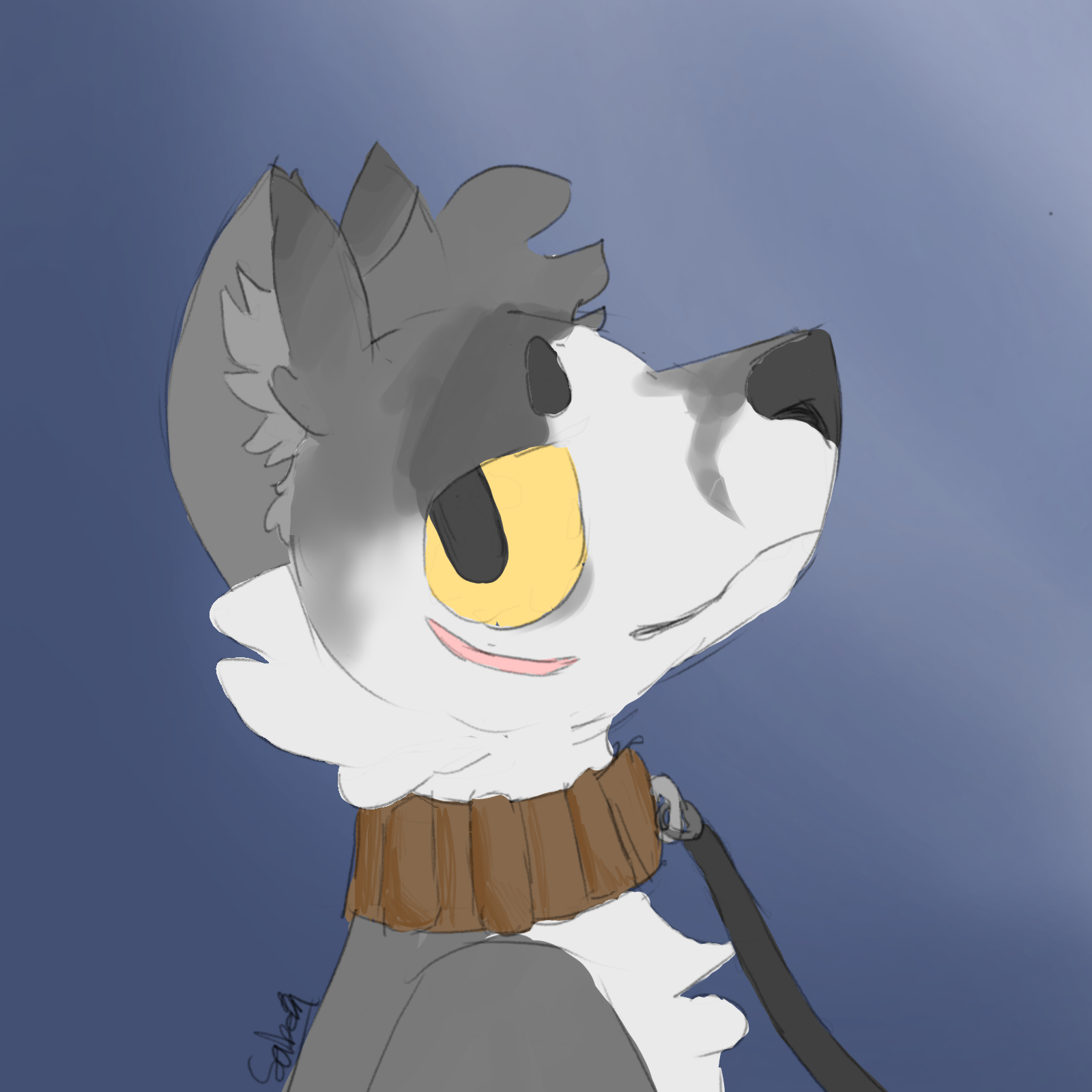 doge with collar.png