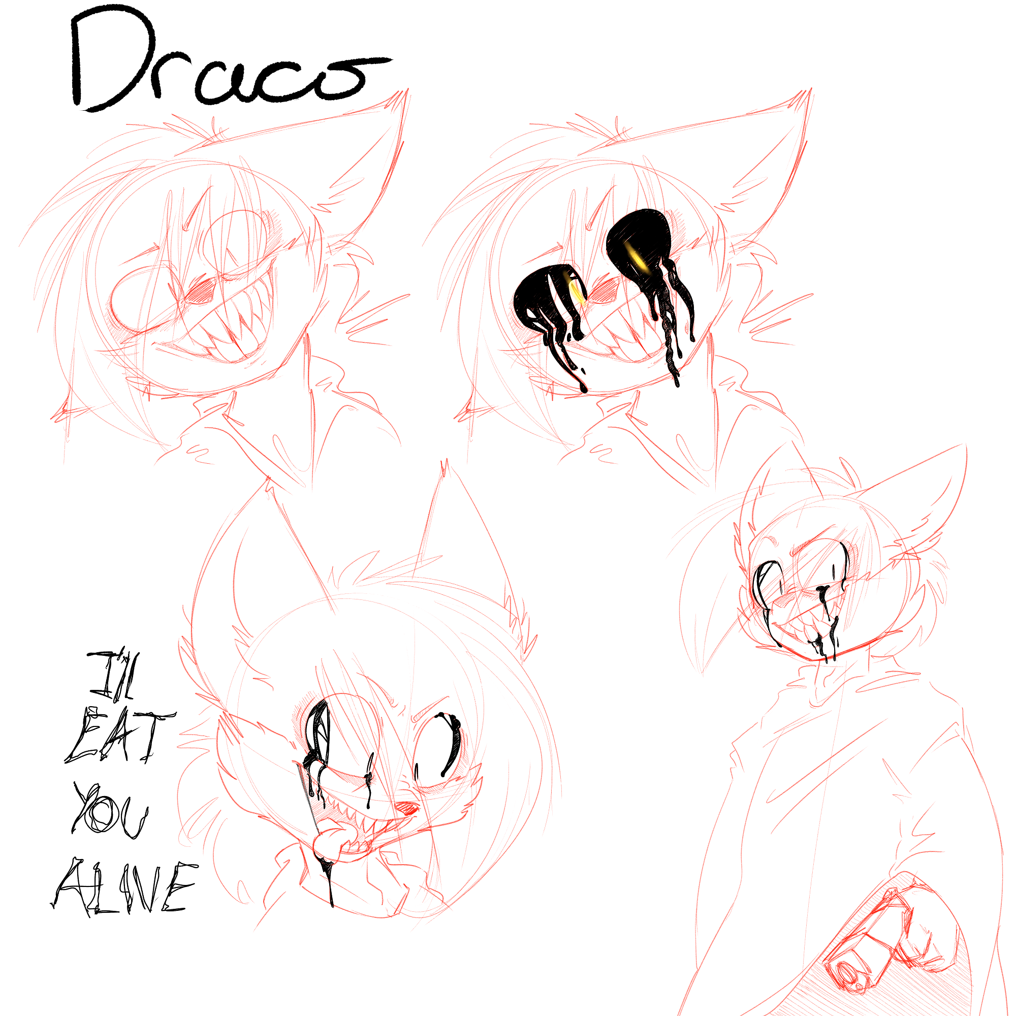 Draco Sketch sheet smaller.png