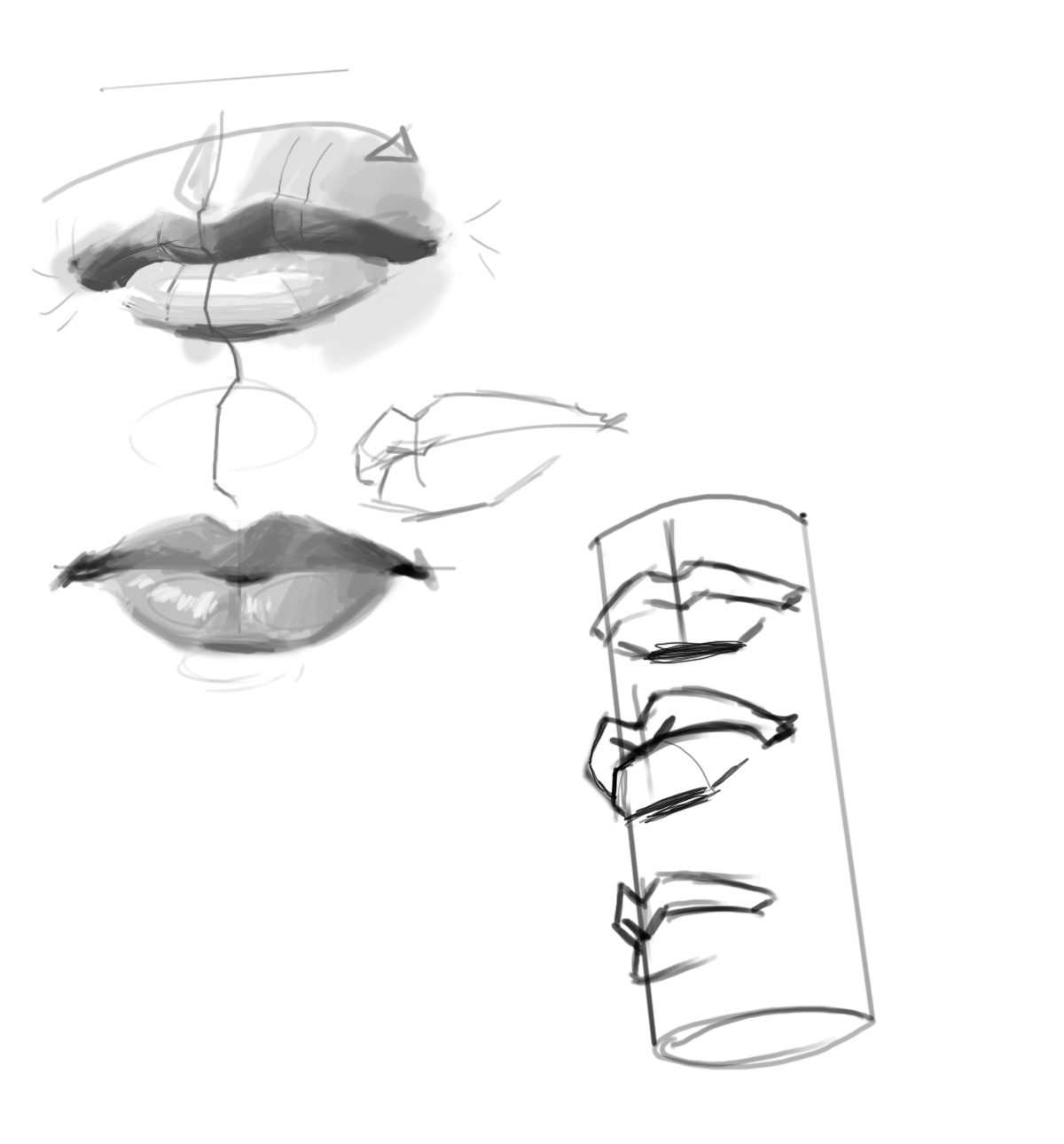 features_lip_study.jpg