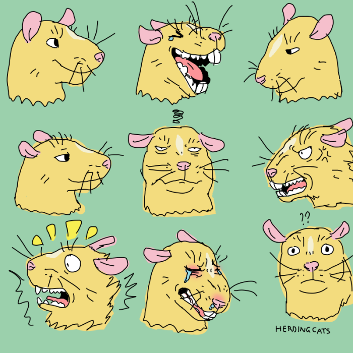 many_faces2.png