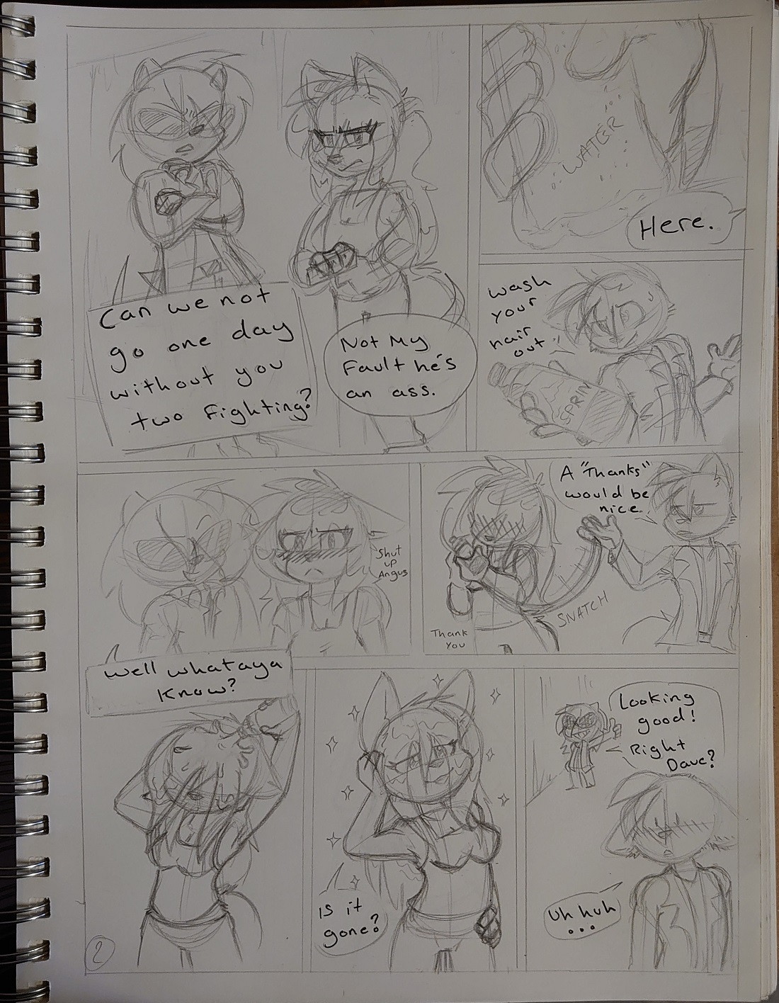 page 2 smaller.jpg