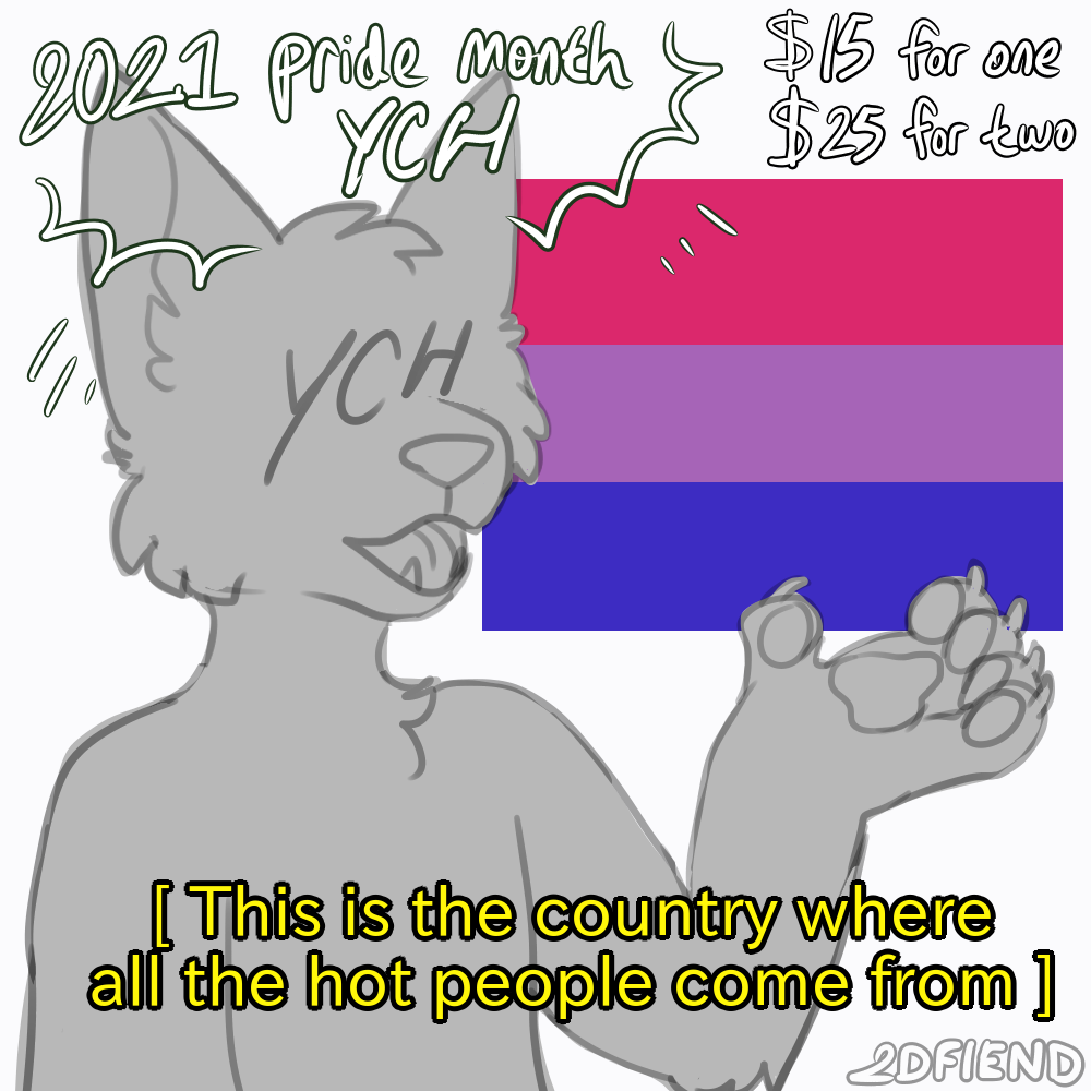 A figure, presenting a bisexual flag saying This is the country where all the hot people come from